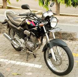 wpid-Tiger-2000.1.jpg